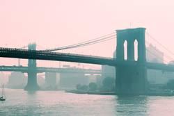 brooklyn bridge / manhattan bridge
