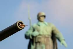 Nie wieder Krieg – Kanonenfutter
