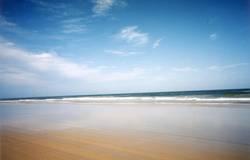 Beach & Water
