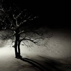 einsam wacht...