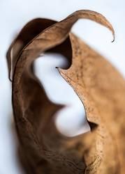 Herbstblatt Umarmung