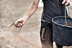 Gärtner verteilt Samen mit der Hand