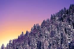 Schräger Winter