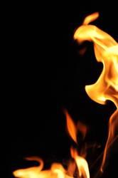 Der Aufbruch - Feuer zerstört und ermöglicht neues Leben
