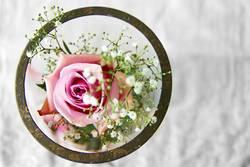 rosa Blume im Glas