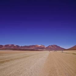 Dali und die Wüste