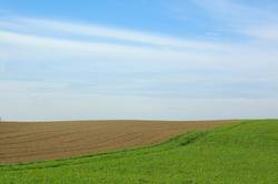 - agrarimpresionen II-