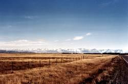 McKenzie-Country