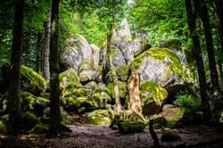 Märchenwald, Teil 2