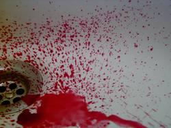 Blutvergießen
