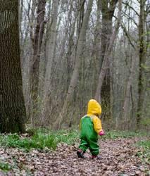 kleiner Waldläufer