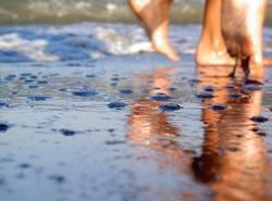 Strandperspektive2