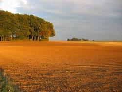 Herbst im Hesseland