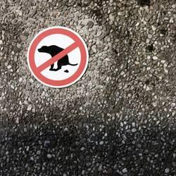 Sche!?en verboten!