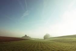 Feld und Flur
