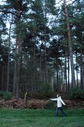 Knuffelchen allein im Wald #1
