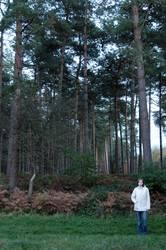 Knuffelchen allein im Wald #2
