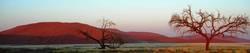 sunrise at namib desert...