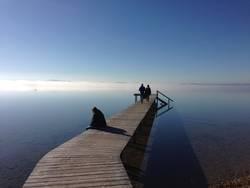 Nebel am Horizont