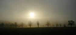 Nebelbänkchen