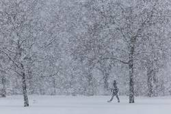 Eine Person geht bei starken Schneefall durch einen Park