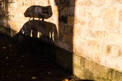 Schatten eines parkenden Autos mit Dachbox