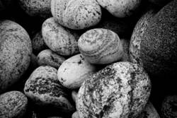 steinige sache