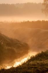 Morgennebel über einem Bach