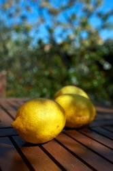Vitamin C aufgetischt II