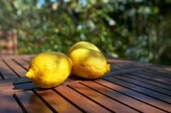Vitamin C aufgetischt I