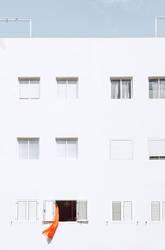 Crazy neighbour