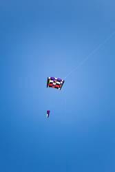 Kite Drache