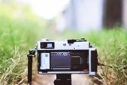 roll film in camera