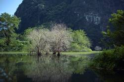 Trang An landscape with water, trees and limestone mountain.