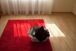 Mein Wäschekorb wartet