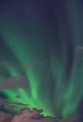 aurora.113