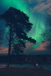aurora.112