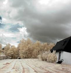 Bild No. 100 - My home...