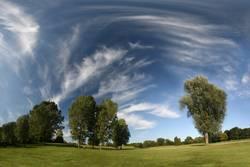 Landschaft - Wiese, Bäume & Zirruswolken