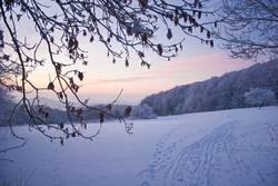 Neulich im Schnee...