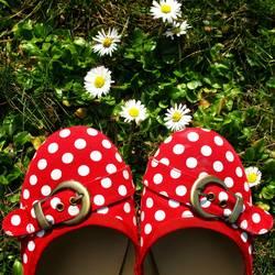 Die Schuhe Meiner Schwester