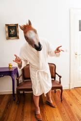 LP.HORSEMAN. V