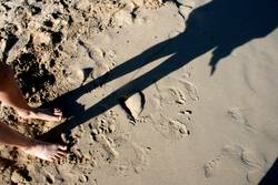 Shadow In The Sand