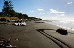 Waitara Beach