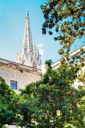 Ausblick von einem Innenhof auf Baum und Kirchendach