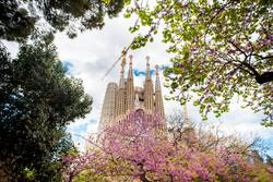 Blick vom Park auf die Sagrada Familia in Barcelona