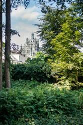 's-Hertogenbosch und die St. Johannes Kathedrale