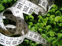measuring...
