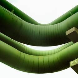 Würmer in der stadt