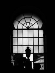 Pokal am Fenster